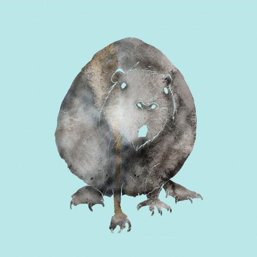 råtter
